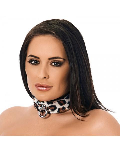 Animal Print Leather Collar